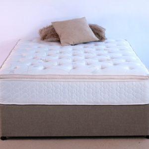 King Koil Club Pocket Pillow Top Spinal Pocket Bed