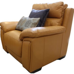Macintyre Electric Recliner Chair